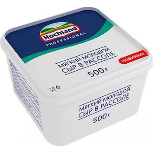 Сыр рассольный молодой Hochland Professional, 500 г