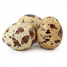Яйца перепелиные, 20 шт